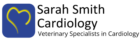 Sarah Smith cardiology - our company logo